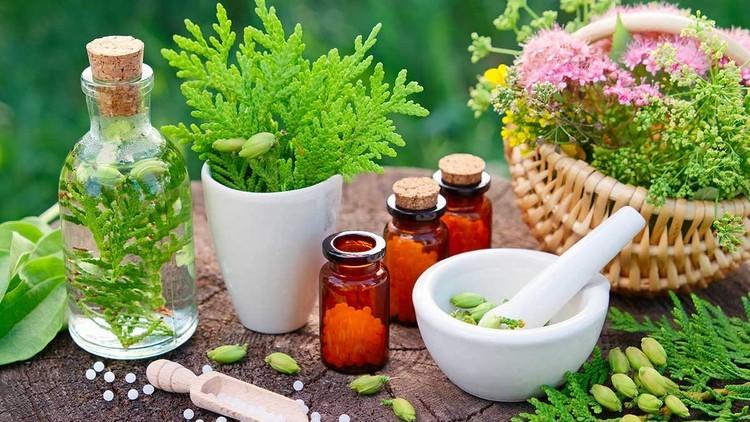 נטורופתיה – תזונה וצמחים